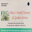 Plants World Nursery & Garden Service